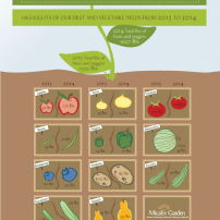 Lisa Acciai - Micah's Garden Infographic 2014