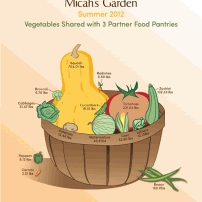 Lisa Acciai -Inforgraphic for Micah's Garden
